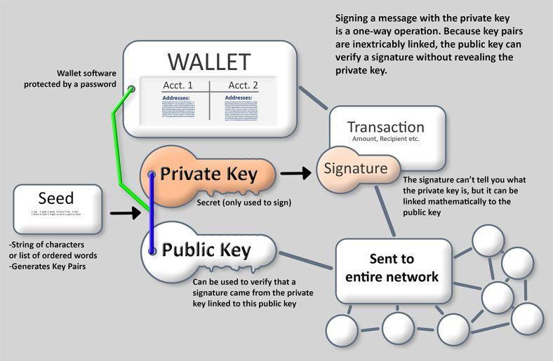 How Bitcoin wallets work and the part keys play, by Grasp Bitcoin.